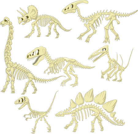 Vector illustration of Cartoon dinosaurs skeleton collection set Illustration