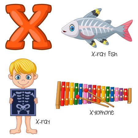 Vector illustration of X alphabet
