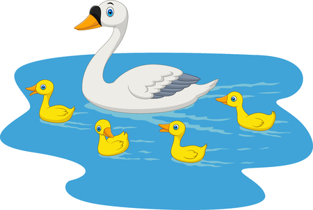 Vector illustration of Cartoon swan family swimming in the pond