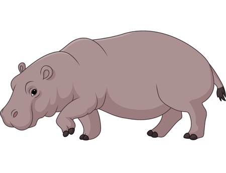 Vector illustration of Cartoon funny hippo isolated on white background