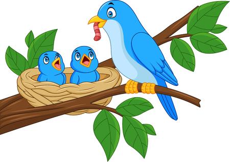 Madre pájaro azul alimentando a bebés en un nido