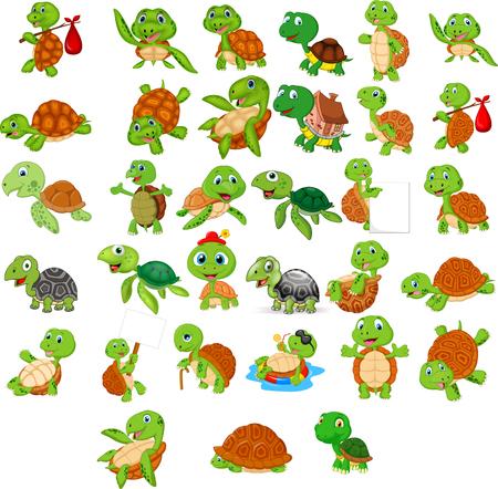 Conjunto de colección de tortugas de dibujos animados Ilustración de vector