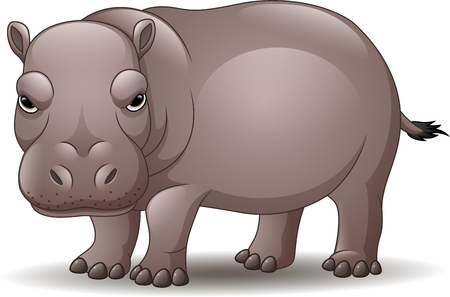 Cartoon funny hippo isolated on white background