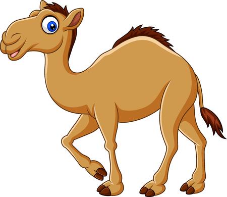 Vektor-Illustration von Cartoon-Kamel isoliert auf weiß Vektorgrafik