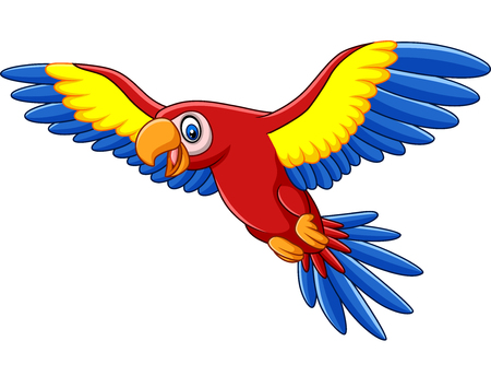 Vector illustration of Cartoon funny macaw flying 向量圖像
