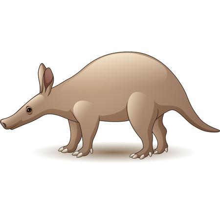 Vector illustration of Cartoon Aardvark isolated on white