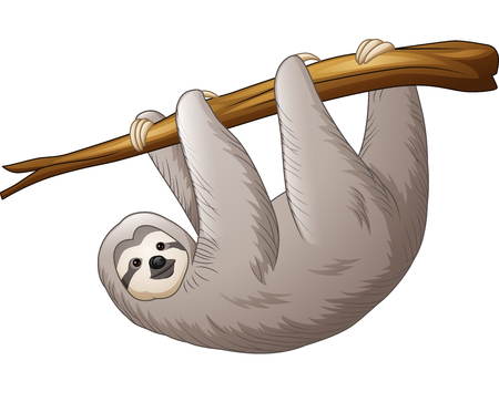 Vector illustration of Cartoon sloth hanging on a branch
