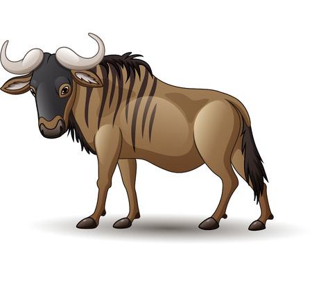 Vector illustration of wildebeest isolated on white