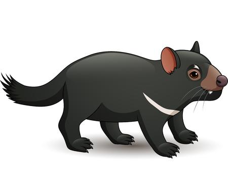Vector illustration of Tasmanian devil isolated on white background Illustration