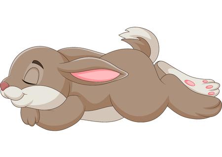 Vector illustration of rabbit sleeping isolated on white background