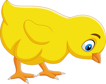 Vector illustration of Cartoon funny baby chick isolated on white background