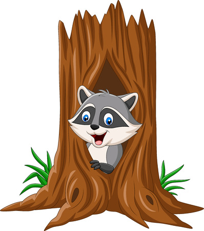 Vector illustration of Cartoon raccoon sitting in hollow of a tree