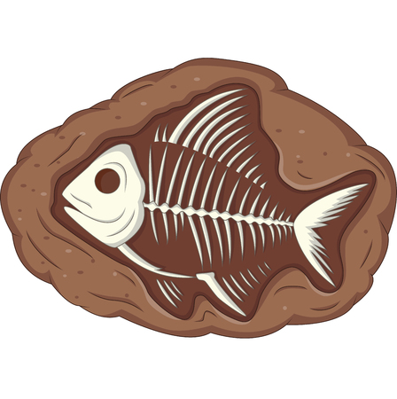 Illustration of underground fish fossil