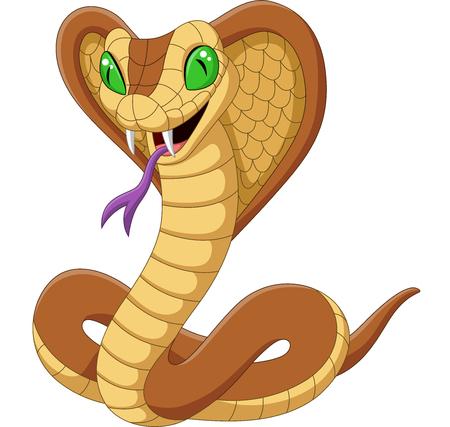 Vector illustration of Cartoon king cobra snake on white background Ilustração