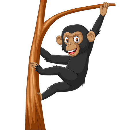 Vector illustration of Cartoon baby chimpanzee hanging in tree branch