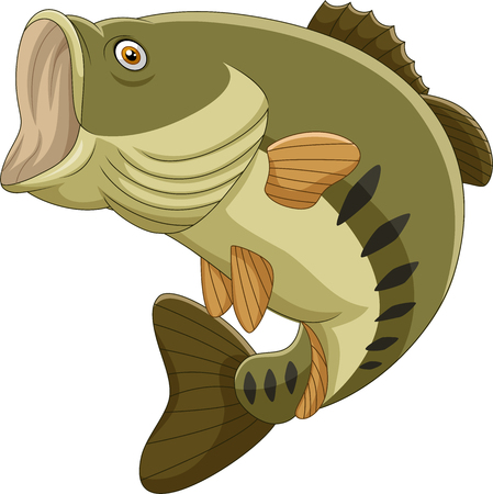 Vector illustration of Cartoon bass fish isolated on white background Çizim