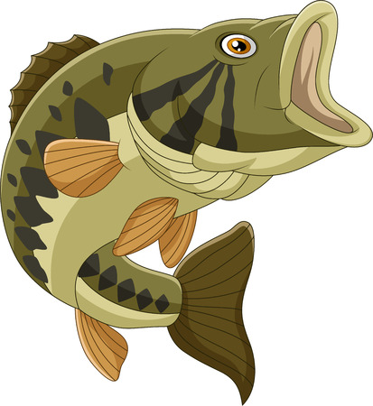 Vector illustration of Cartoon bass fish isolated on white background  イラスト・ベクター素材