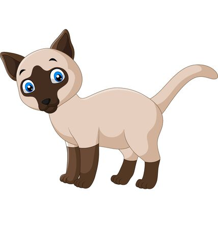 Vector illustration of Cartoon cute siamese cat on a white background