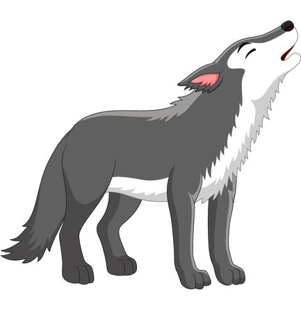 Vector illustration of Cartoon wolf howling on white background