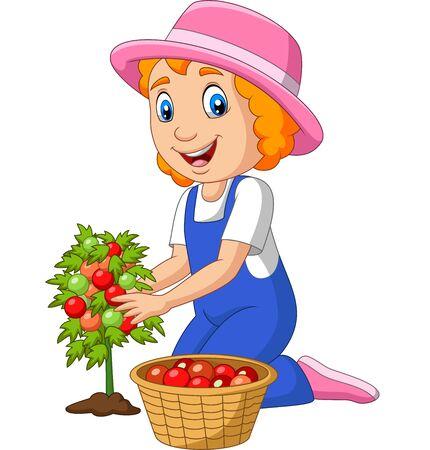 Vector illustration of Cartoon little girl harvesting tomatoes Фото со стока - 128376852