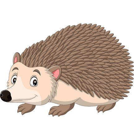 Illustrazione vettoriale di cartone animato felice riccio su sfondo bianco