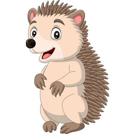 Vector illustration of Cartoon happy hedgehog standing on white background