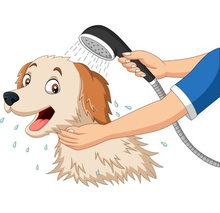 Vector illustration of Cartoon dog bathing with shower
