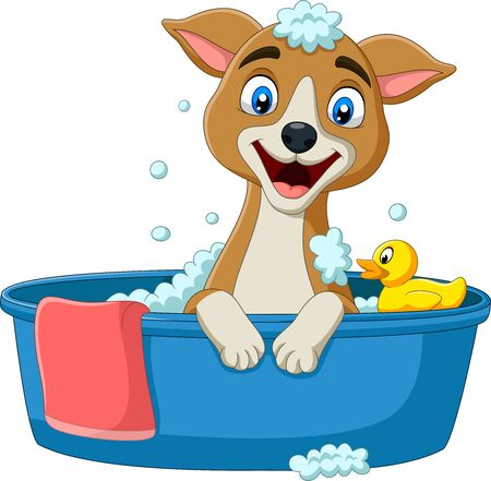 Vector illustration of Cartoon dog having a bath