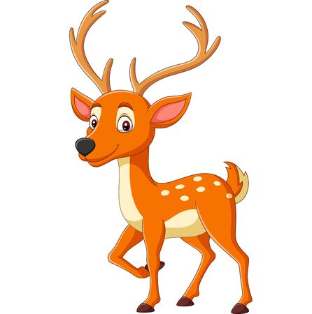 Vector illustration of Cartoon cute deer on white background