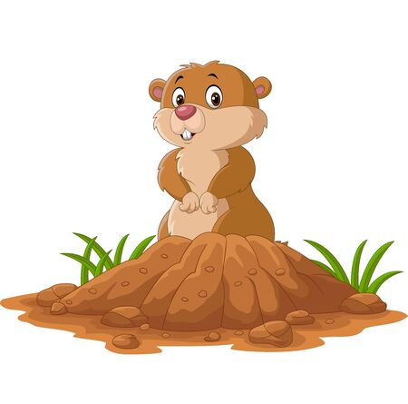 Vector illustration of Cartoon funny groundhog standing outside its burrow