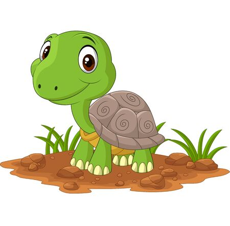 Vector illustration of Cartoon baby turtle in the field