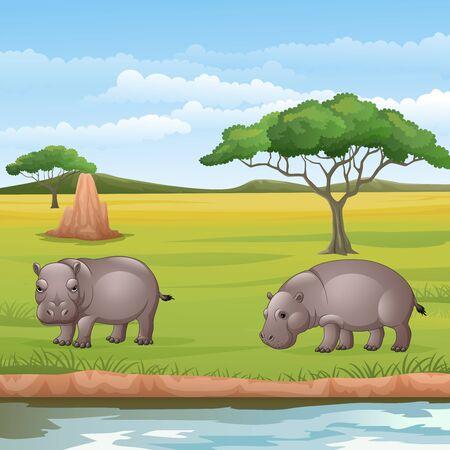 Vector illustration of Cartoon two hippos in the Savannah