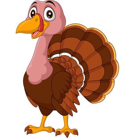 Vector illustration of Cartoon turkey on white background