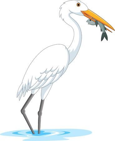 Vector illustration of Cartoon stork eating a fish