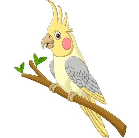 Cartoon yellow cockatiels sitting on a tree branch