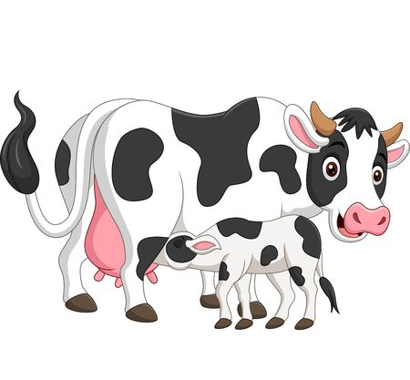 Vector illustration of Cartoon mother cow feeding baby calf Ilustrace