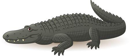 Vector illustration of Cartoon grey alligator isolated on white