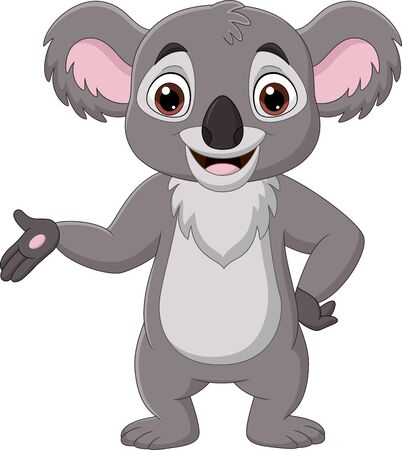 Vector illustration of Cartoon happy koala presenting on white