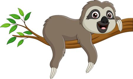 Vector illustration of Cute baby sloth on tree branch