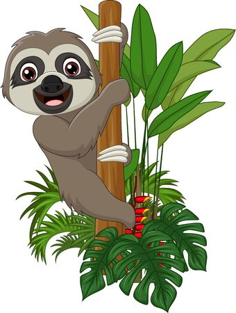Vector illustration of Cute baby sloth climbing on tree branch