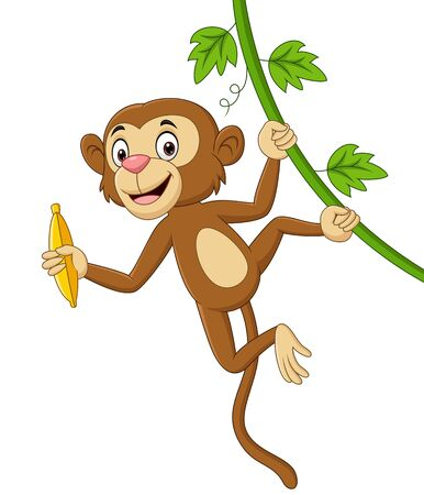 Vector illustration of Cartoon monkey hanging and holds banana in tree branch