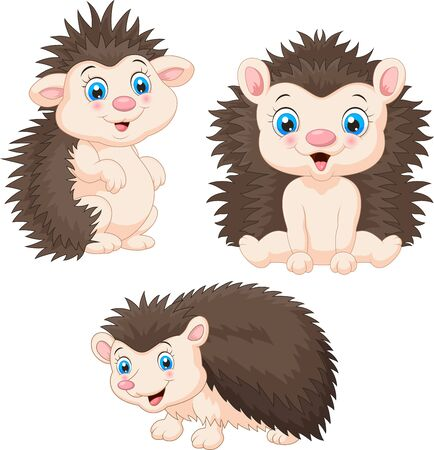 Vector illustration of Collection of baby hedgehog cartoon sets