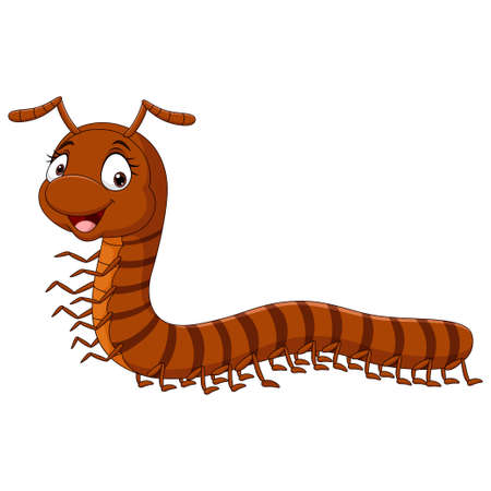 Cartoon funny millipede on white background
