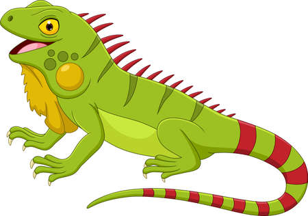 Cartoon iguana isolated on white background