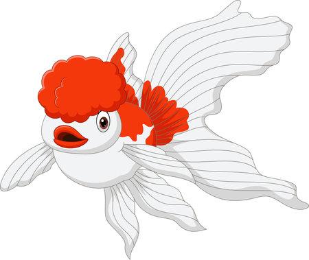 Cartoon oranda goldfish on a white background