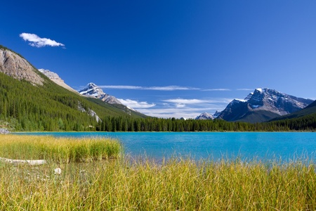 Beautiful Canadian Landscape: Lake with turquoise blue water, Rocky Mountains and Clear Sky. Photo is taken on sunny day of Autumn in Jasper National Park, Alberta, Canada