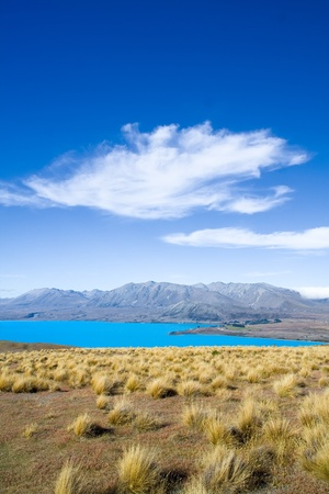 tekapo: Lake Tekapo, New Zealand Stock Photo