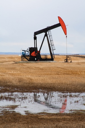 horsehead pump: A pumpjack in Alberta, Canada.