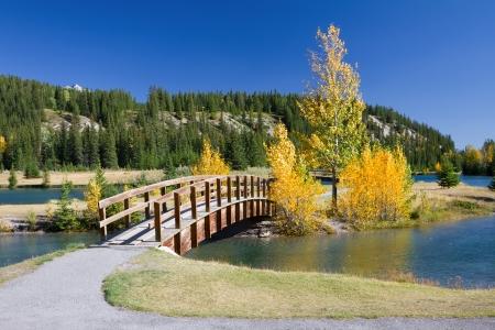 Herbst im Banff National Park, Alberta, Kanada Schöne Landschaft mit gelben Bäume und Holzbrücke über den Fluss