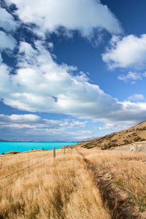 Beautiful New Zealand Landscape photo